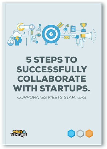 Whitepaper 5 Steps to Successfully Collaborate with Startups