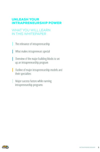WhatAVenture_Intrapreneurship_Empower_Your_Employees (1)_Page_03