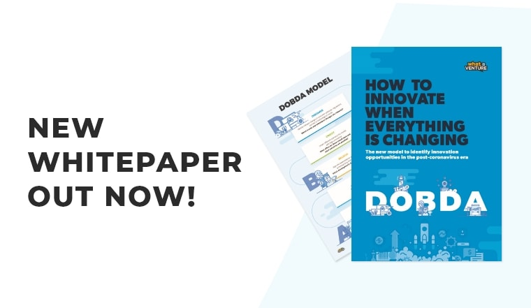 DOBDA Model: how to innovate whe everything is changing